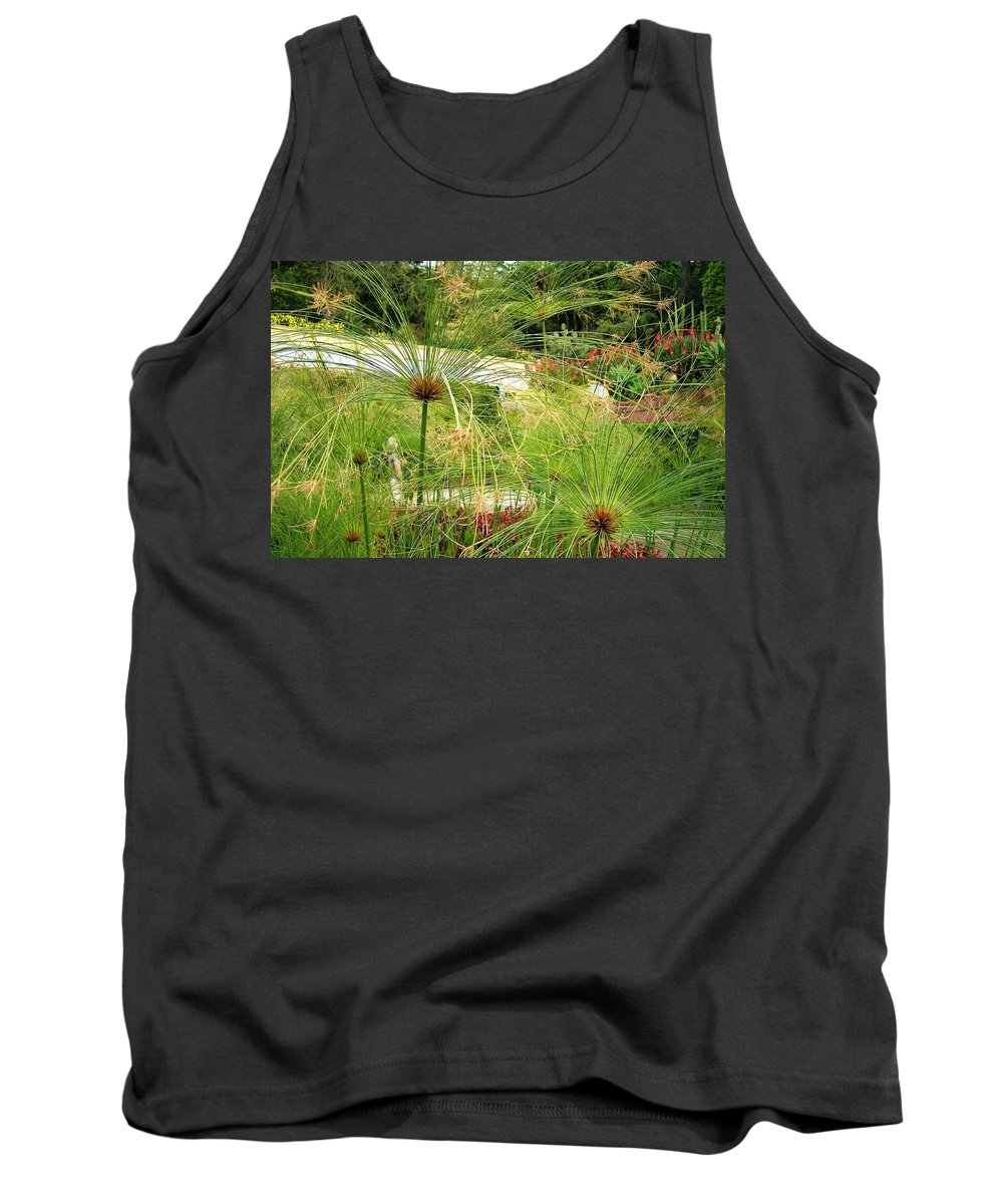 Landscape Tank Top featuring the photograph Cyperus Papyrus - Bulrush by Valerie Ornstein