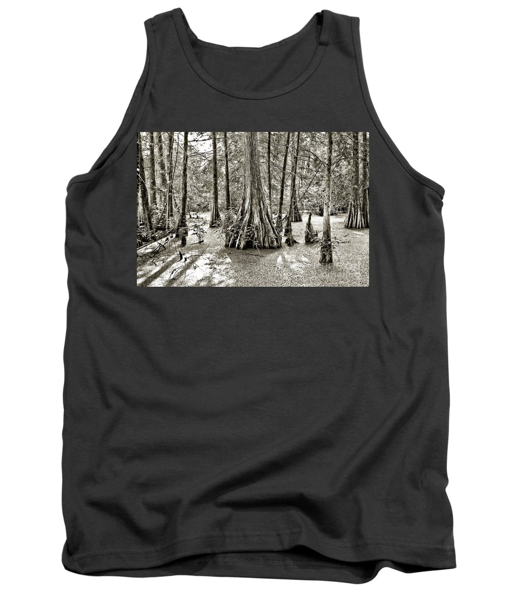 Cypress Trees Tank Top featuring the photograph Cypress Evening by Scott Pellegrin