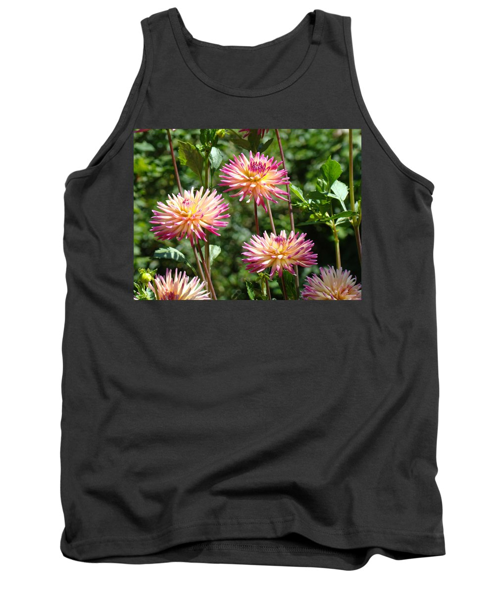 Dahlia Tank Top featuring the photograph Dahlia Garden Floral Pink Yellow Botanical Landscape Baslee Troutman by Baslee Troutman