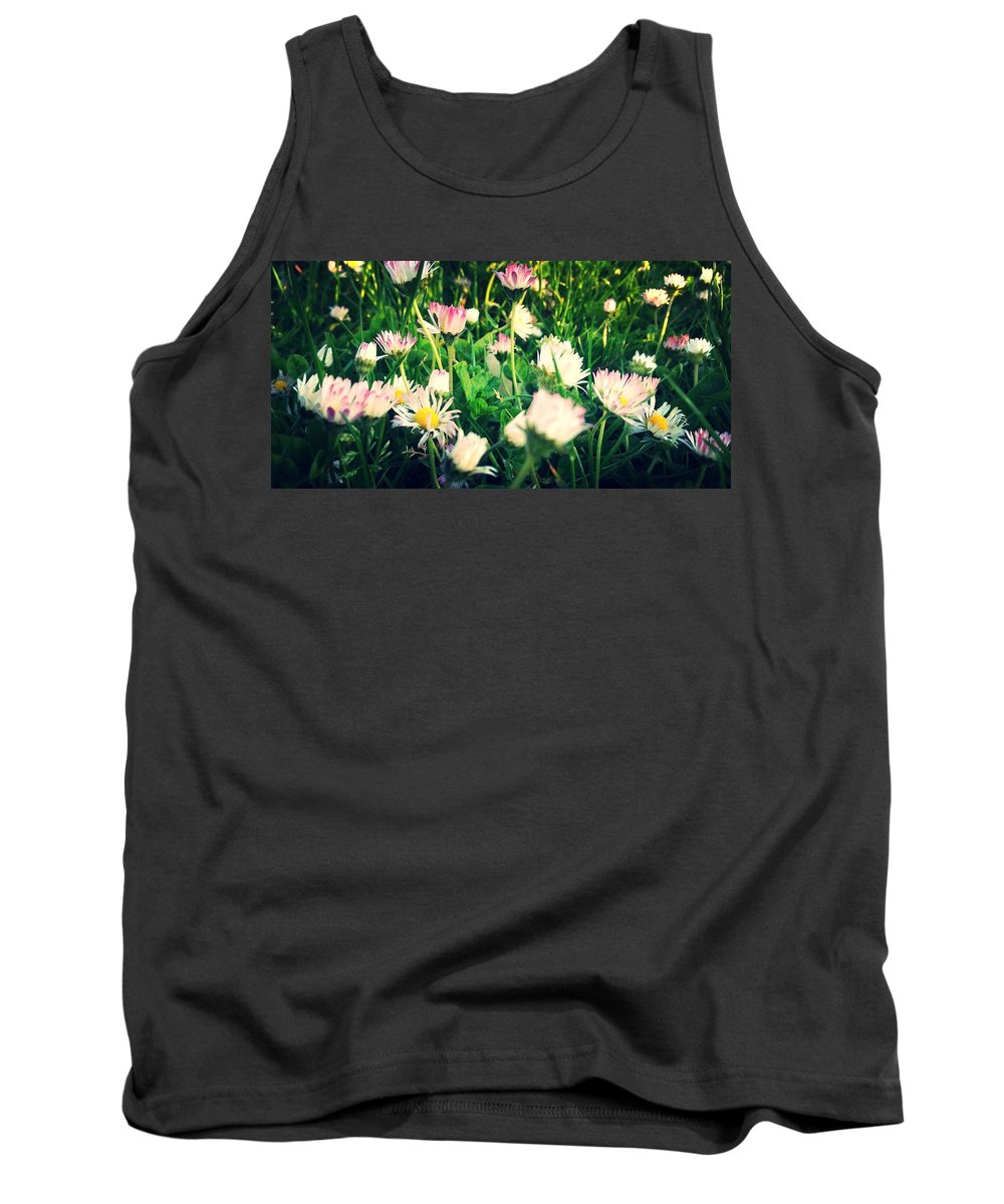 Daisy Petal Pink White Grass Blades Yellow Pollen Daisies Macro Tank Top featuring the photograph Daisy Daisy by In Plain Sight