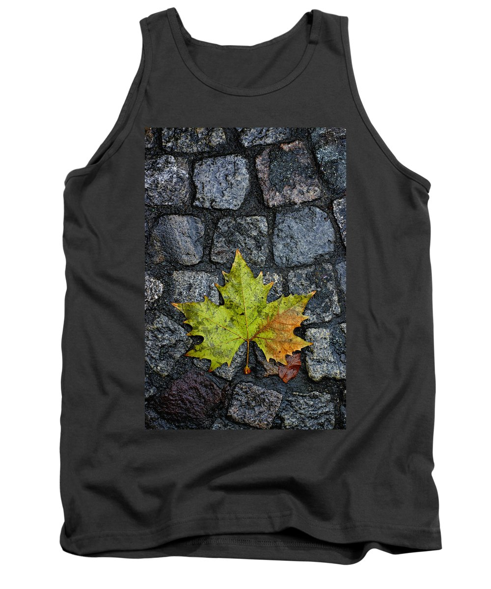Nature Tank Top featuring the photograph Deville by Skip Hunt