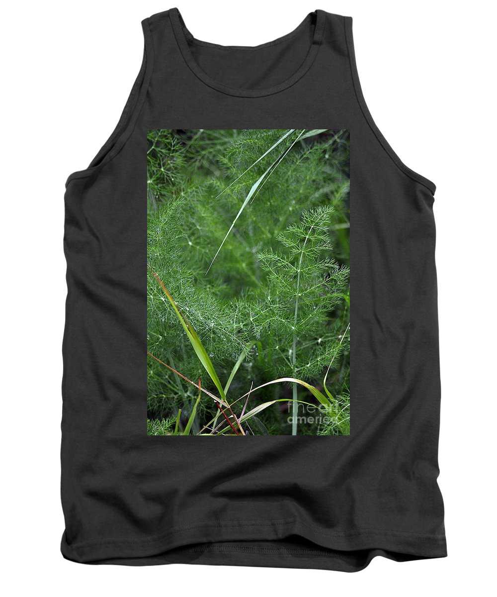 Clay Tank Top featuring the photograph Dew On The Ferns by Clayton Bruster