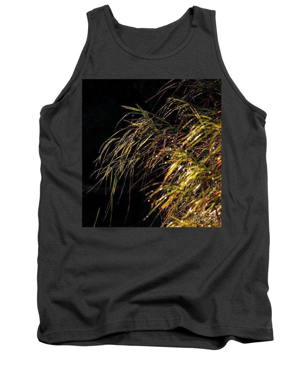 Grass Tank Top featuring the photograph Dewy River Grass by Mim White