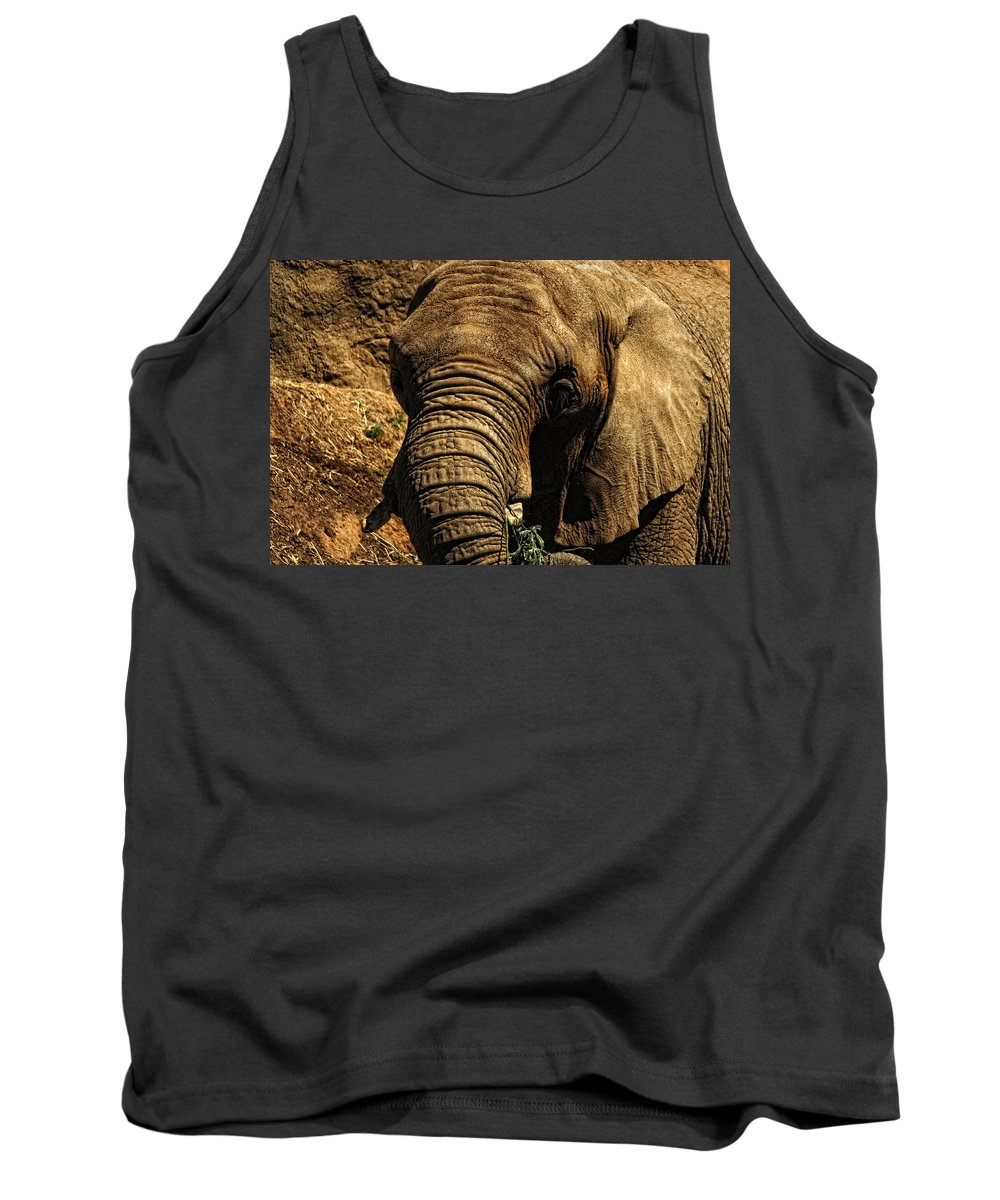 Elephant Tank Top featuring the photograph Disappearing Elephant by Donna Blackhall