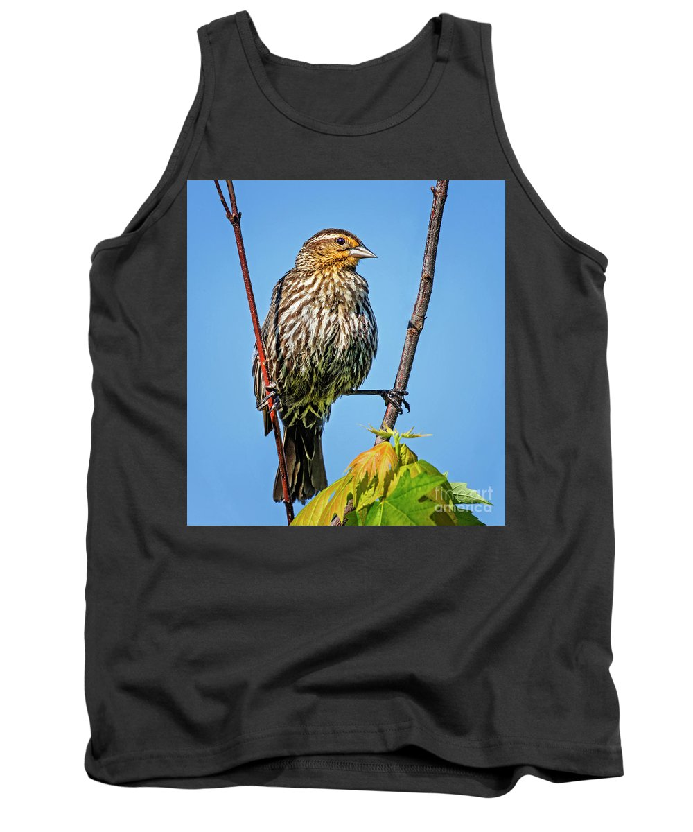 Bird Tank Top featuring the photograph Doing The Spilts by Emma England