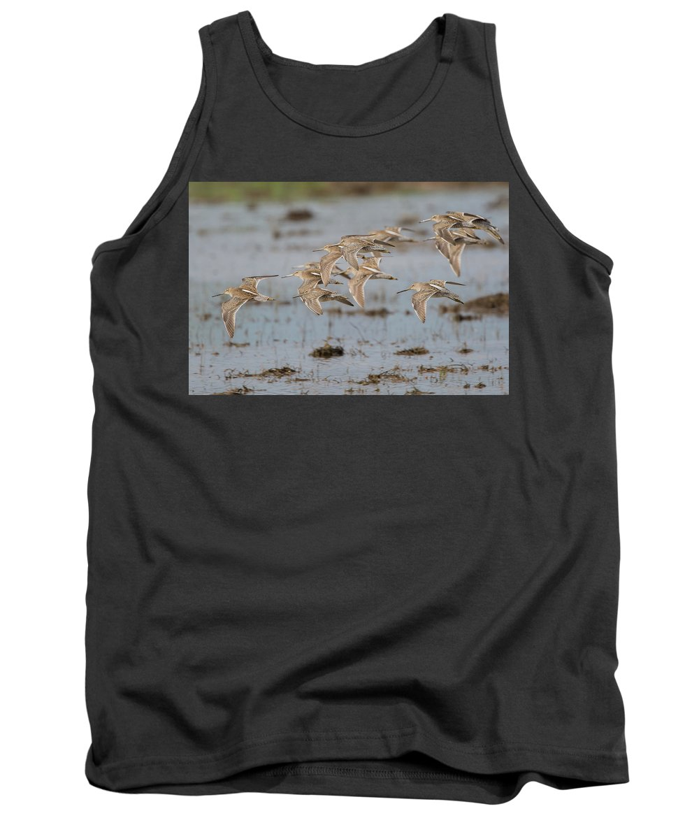 Ronnie Maum Tank Top featuring the photograph Dowitchers by Ronnie Maum