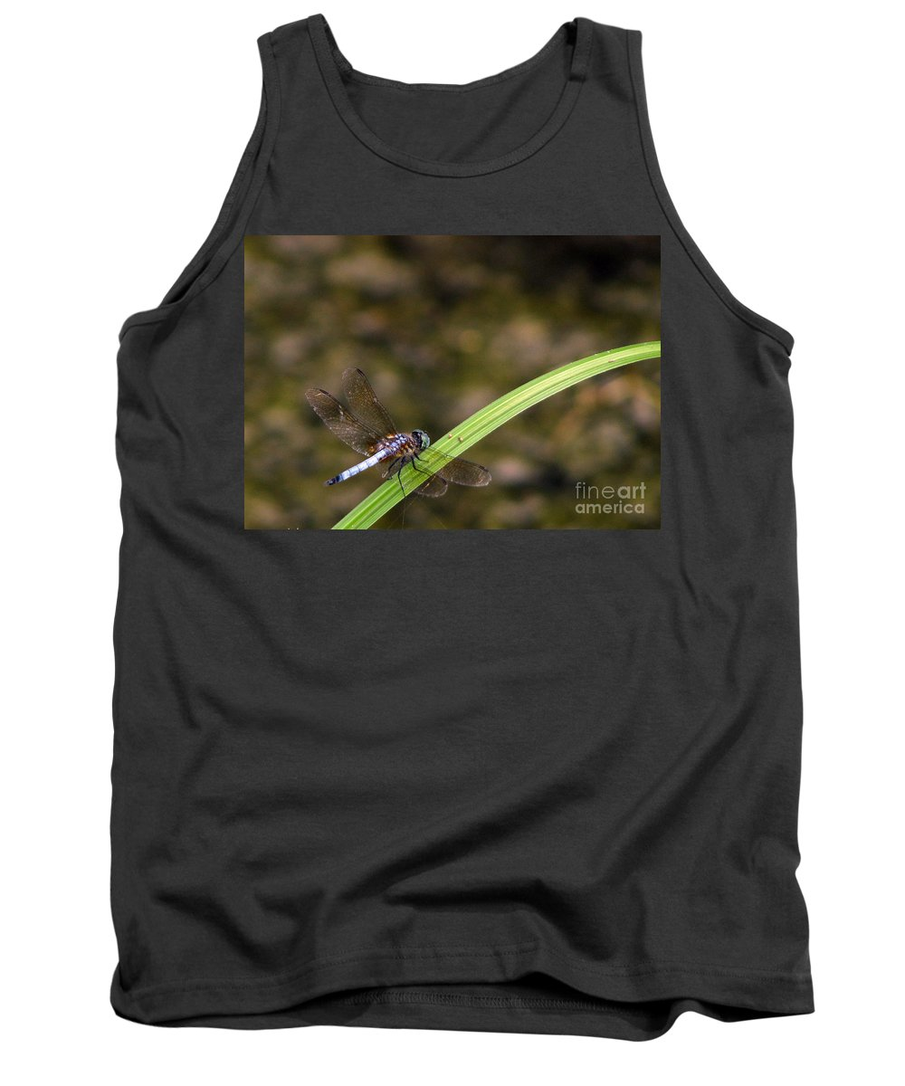 Dragonfly Tank Top featuring the photograph Dragonfly by Amanda Barcon