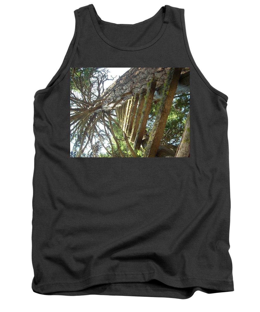 Ladder Tank Top featuring the photograph Dream Up by Sara Stevenson