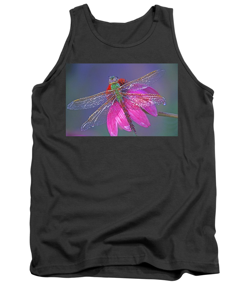 Dew Covered Dragonfly Rests On Purple Cone Flower Tank Top featuring the photograph Dreaming Dragon by Bill Morgenstern