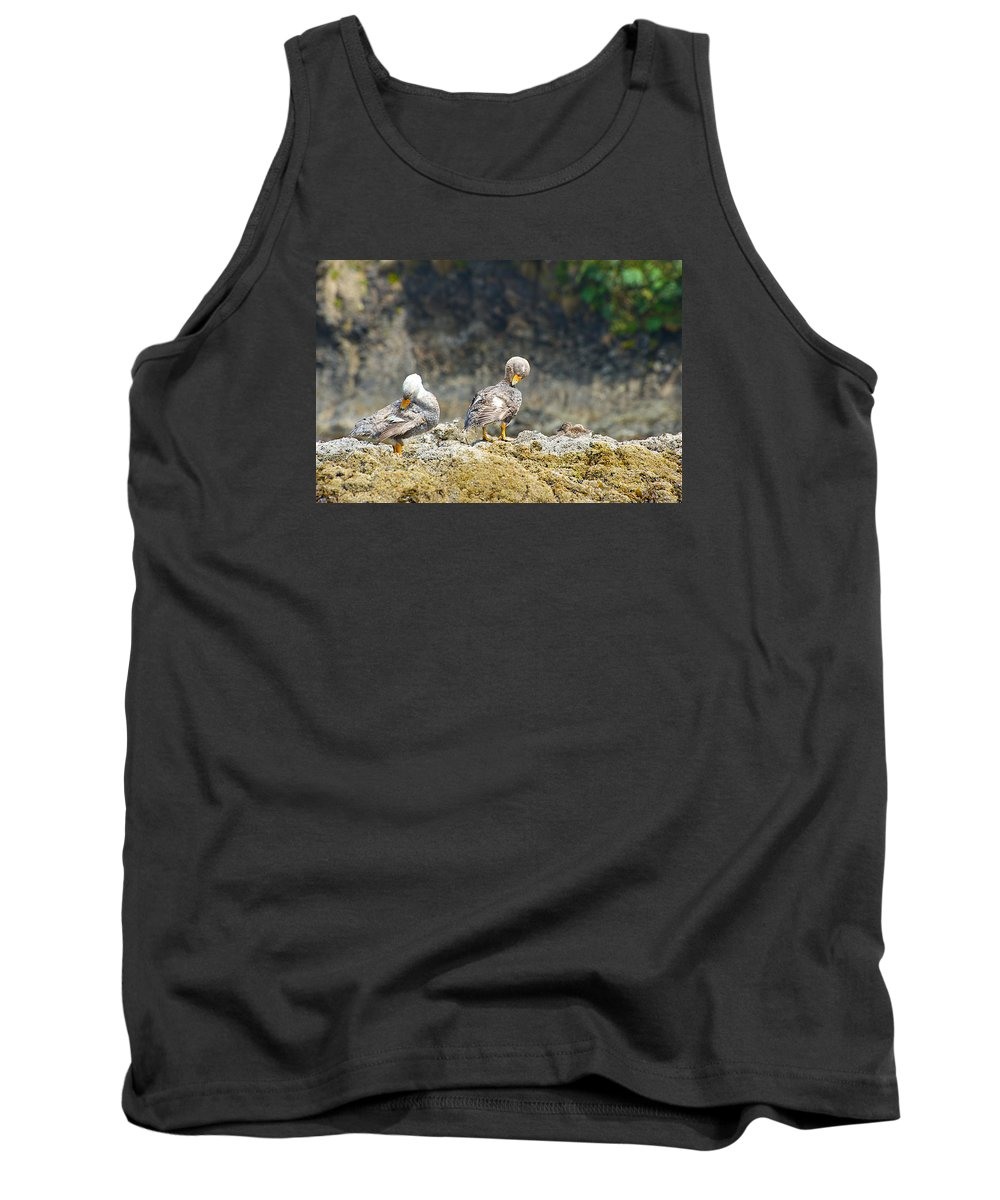 Photograph Tank Top featuring the photograph Ducks On A Rock by Richard Gehlbach