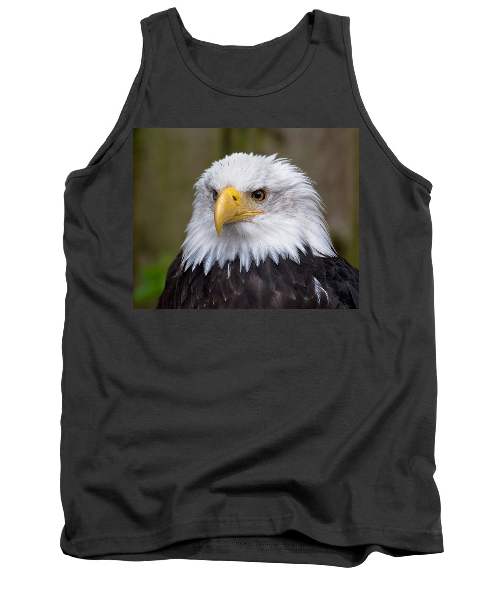 Eagle Tank Top featuring the photograph Eagle In Ketchikan Alaska by Michael Bessler