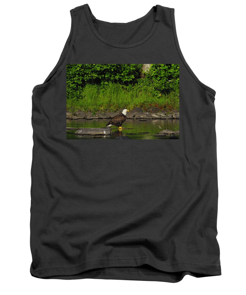 Eagle Tank Top featuring the photograph Eagle On A River Rock by Alice Markham