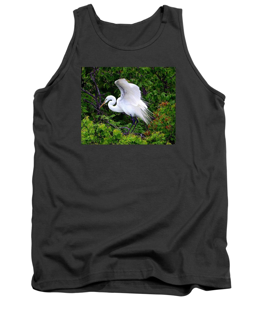 Great Egret; Egret; White Egret; Chinese Tallow; Chinese Tallow Tree; Ardea Alba; Triadica Sebifera; Wings; Stretching; Aquatic Bird; Aquatic; Water Fowl; Waders; White Rock Lake; Dallas Texas; Tree Above The Lower Spillway Steps Tank Top featuring the photograph Early Color by Kala King