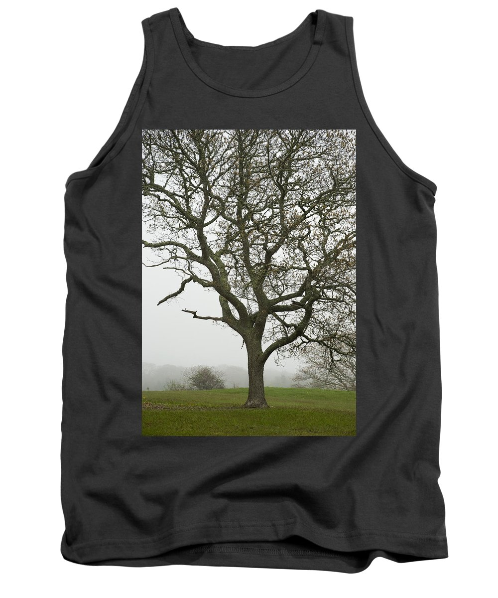 Edgartown Tank Top featuring the photograph Edgartown Scene by Charles Harden
