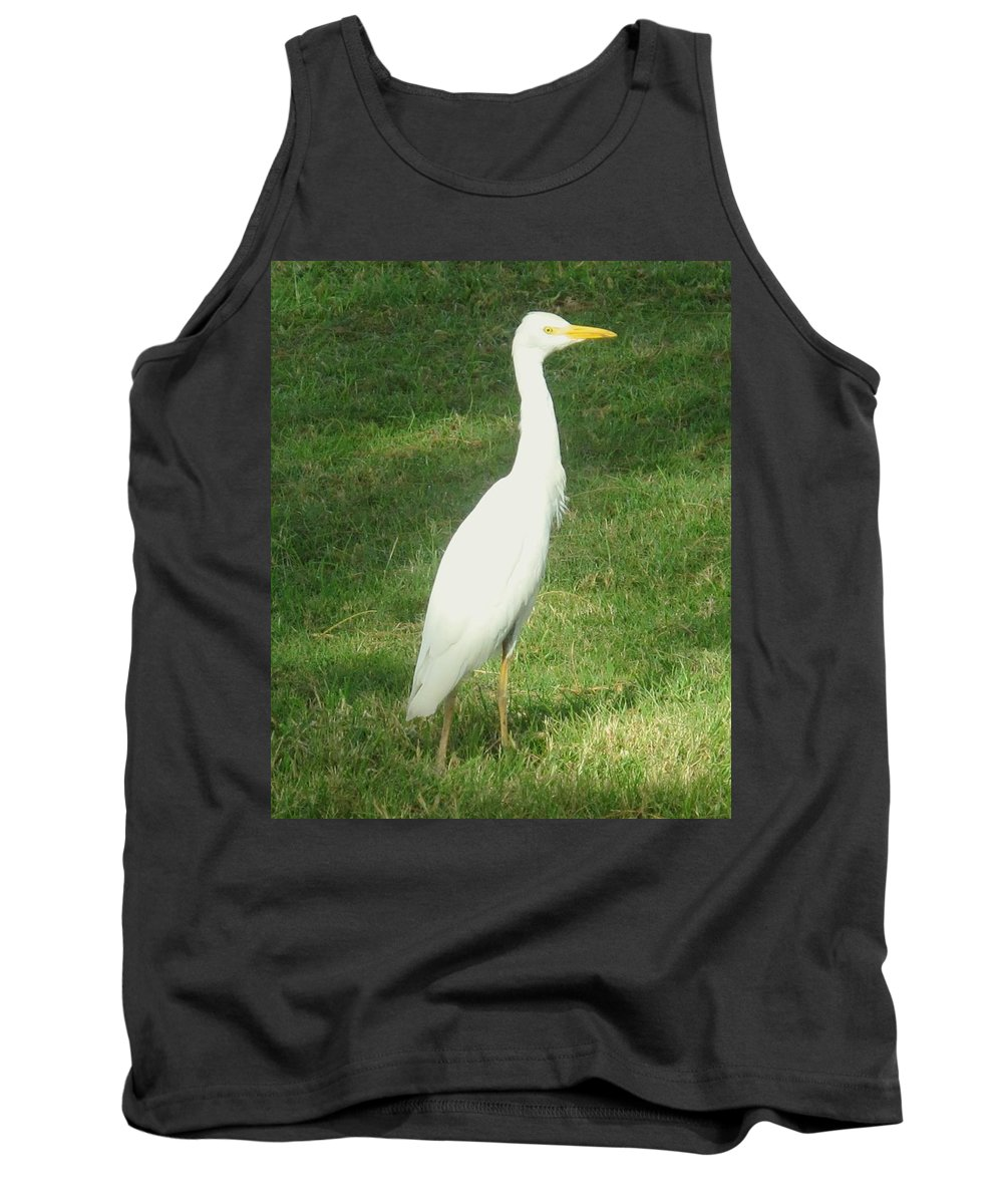 Egret Tank Top featuring the photograph Egret Posing by Ian MacDonald