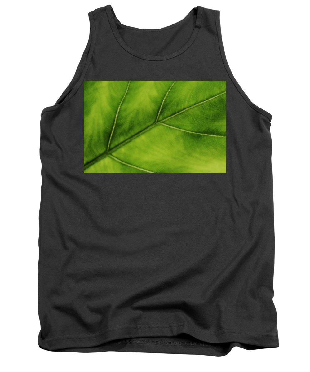 Leaf Tank Top featuring the photograph Elephant Ear by Marilyn Hunt