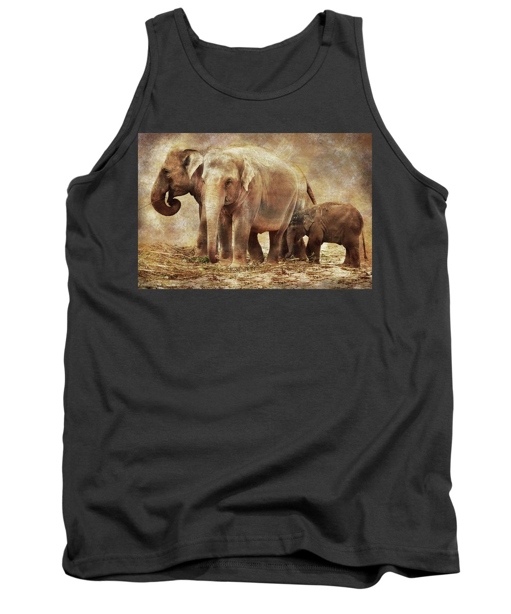 Elephant Tank Top featuring the photograph Elephant Family by Mihaela Pater