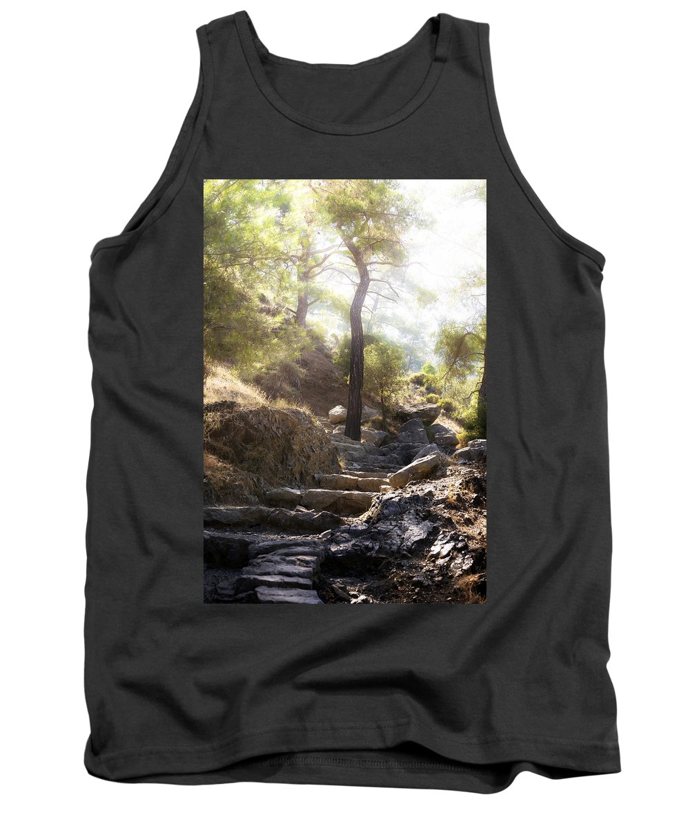Wood Tank Top featuring the photograph Enchanted Forest by Joana Kruse