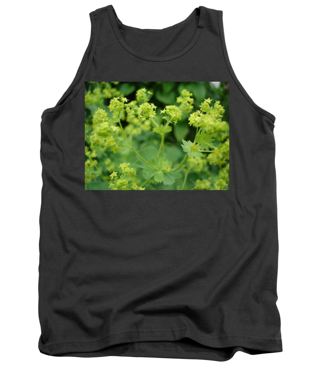 Plant Tank Top featuring the photograph English Ladys Mantle by Susan Baker