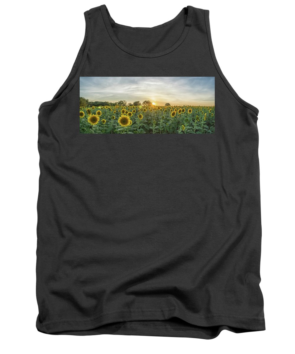 Neuse River Greenway Tank Top featuring the photograph Evening Sunflowers by Randy Blaustein