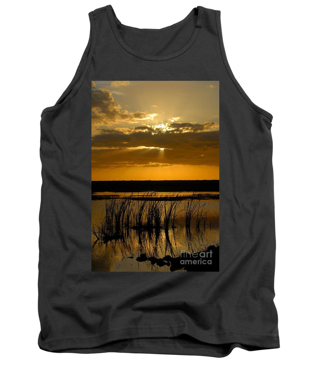 Everglades National Park Florida Tank Top featuring the photograph Everglades Evening by David Lee Thompson