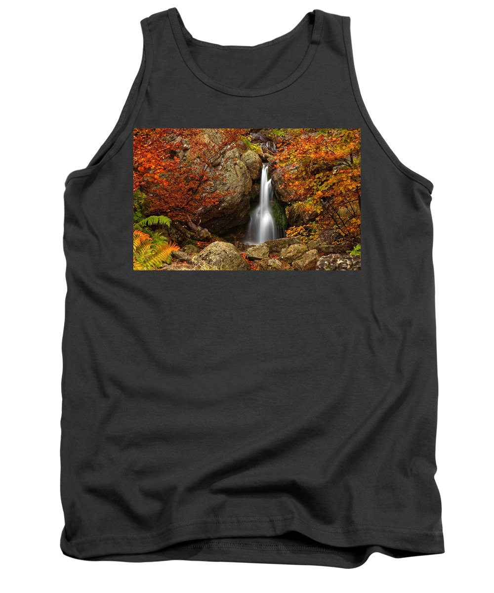 Mountain Tank Top featuring the photograph Fairy Fall by Evgeni Dinev