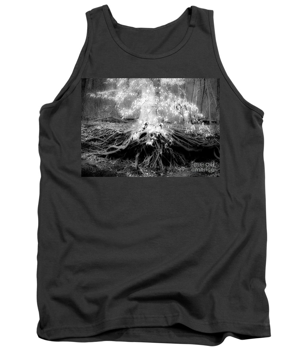 Fairy Tree Tank Top featuring the photograph Fairy Tree by Edward Spector