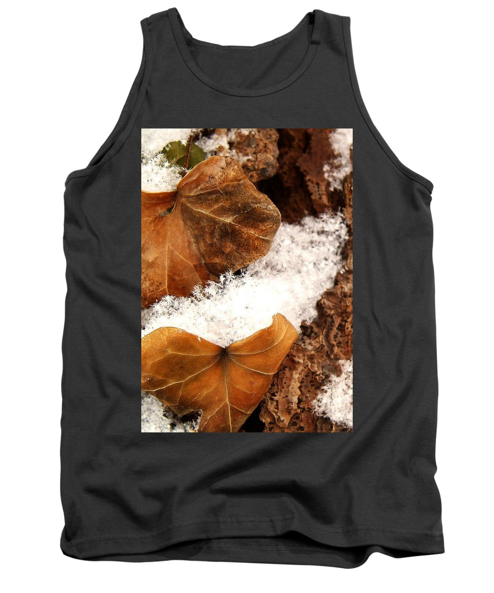 Fall Tank Top featuring the photograph Fall And Winter by Gaby Swanson