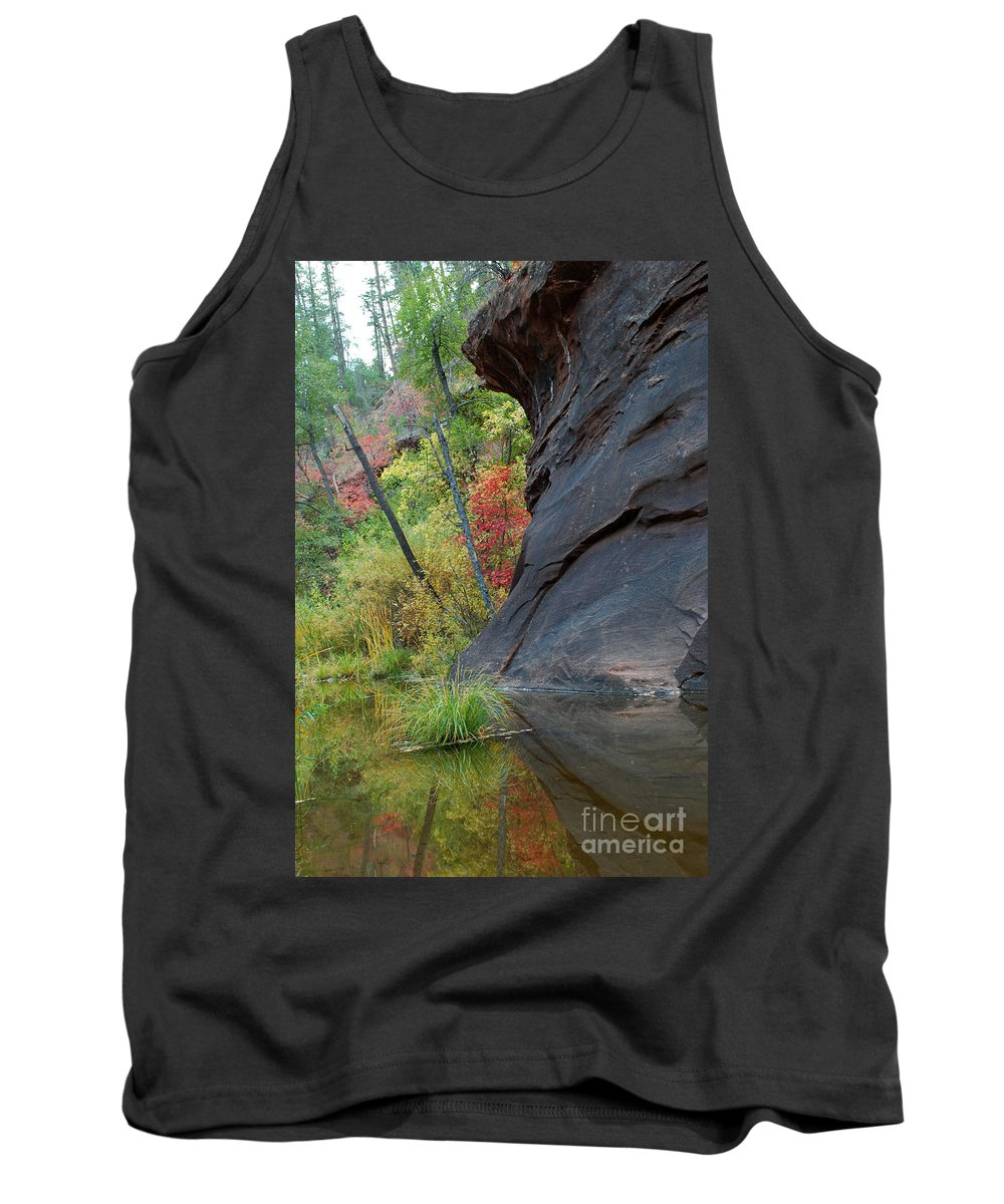 Landscape Tank Top featuring the photograph Fall Colors Peek Around Mountain Vertical by Heather Kirk