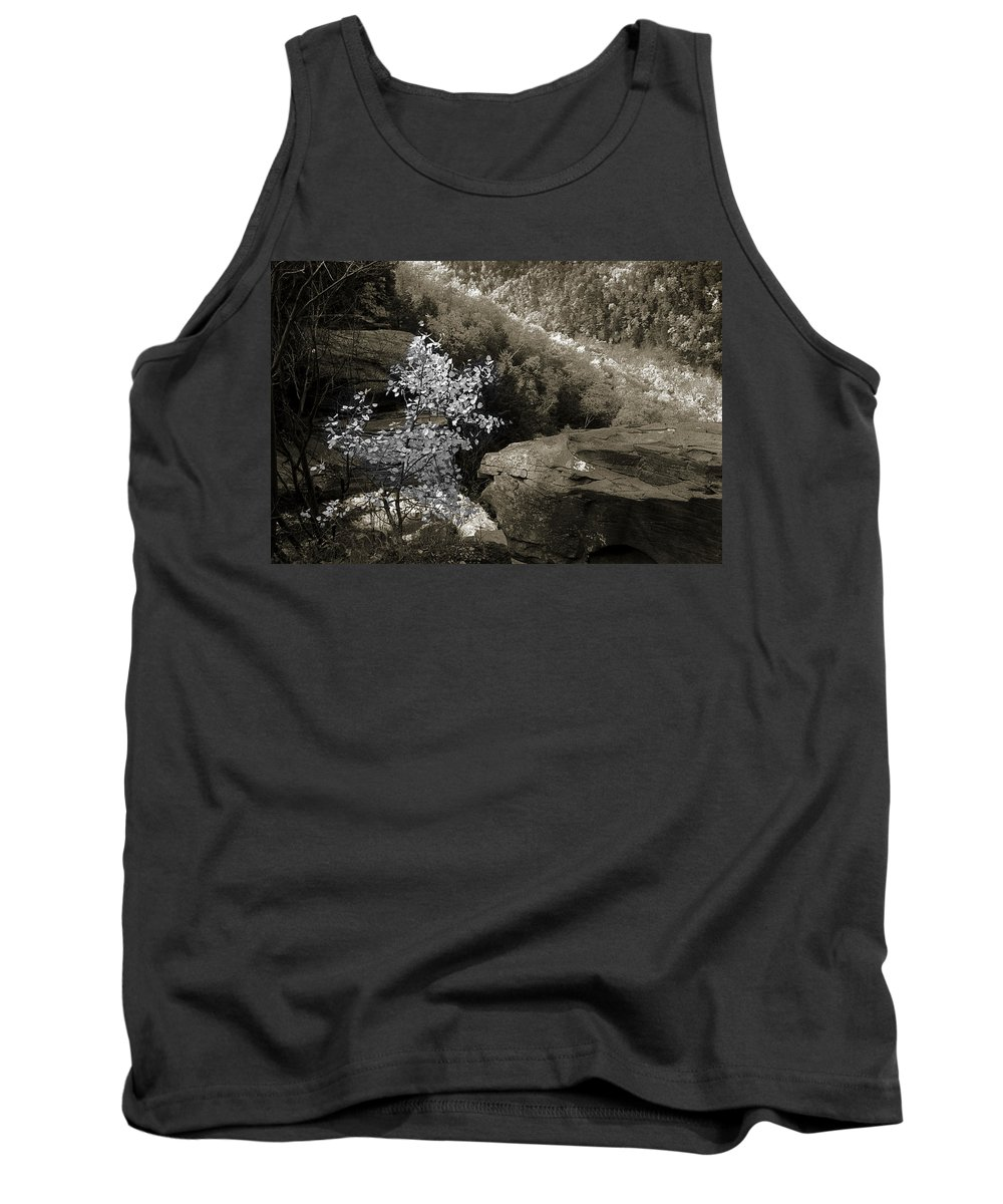 Nature Tank Top featuring the photograph Fall Foliage by Yuri Lev