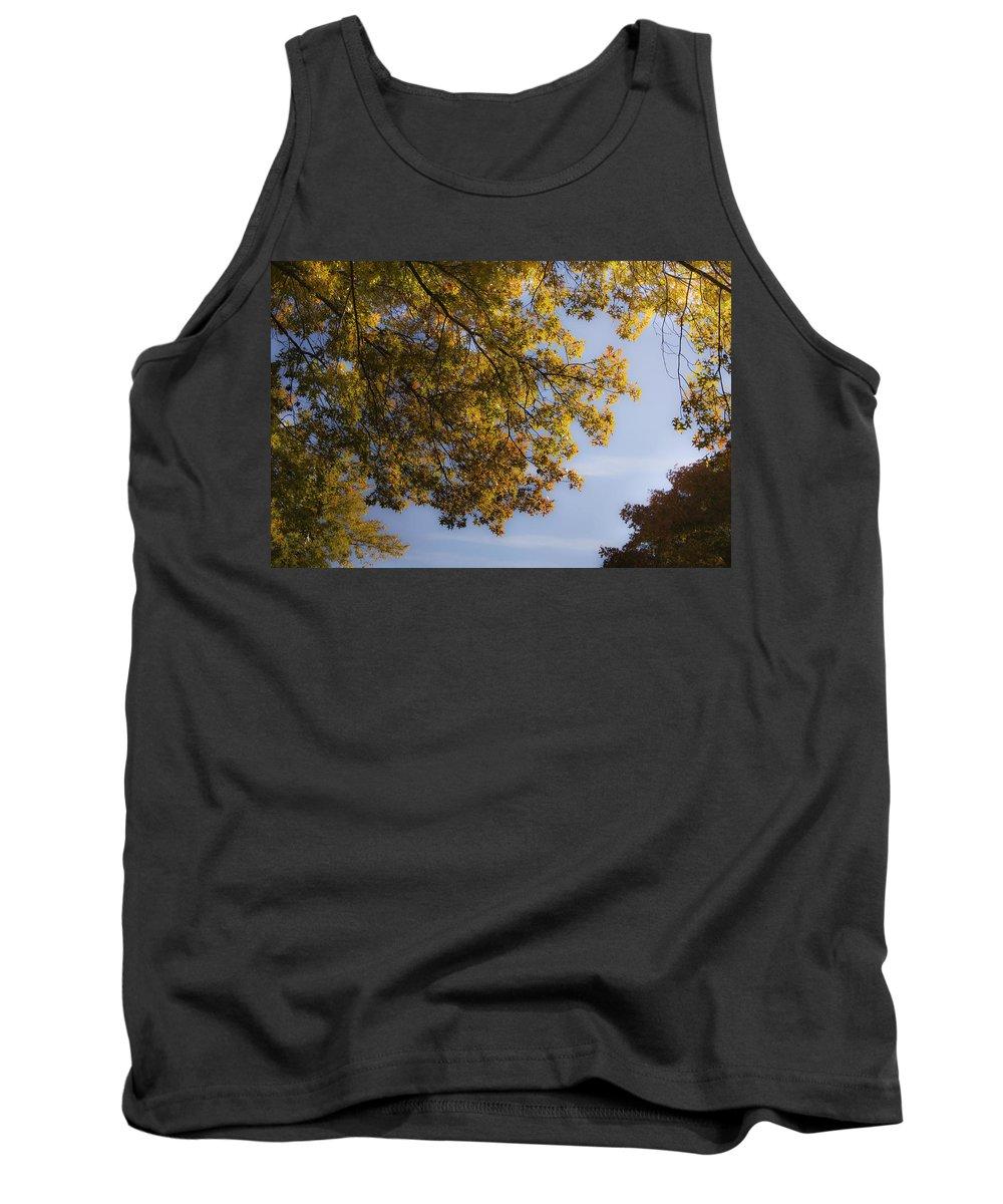 Fall Tank Top featuring the photograph Fall Magic by Teresa Mucha