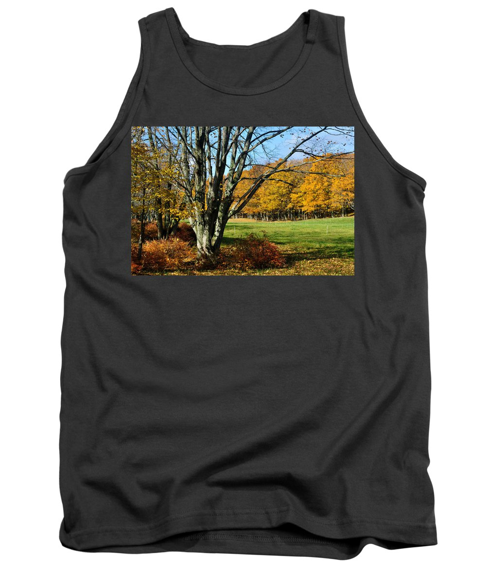 Trees Tank Top featuring the photograph Fall Pasture by Tim Nyberg
