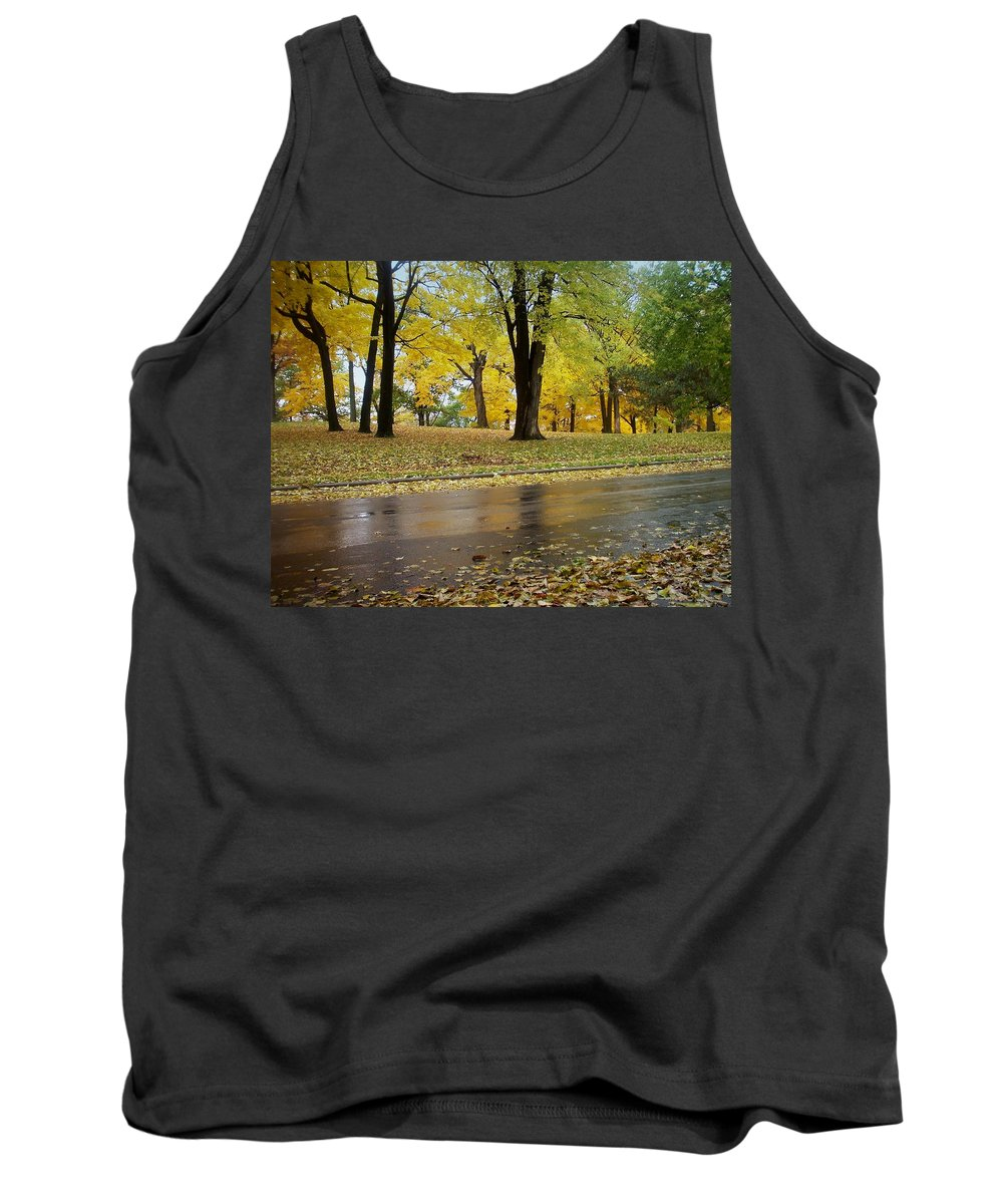 Fall Tank Top featuring the photograph Fall Series 15 by Anita Burgermeister