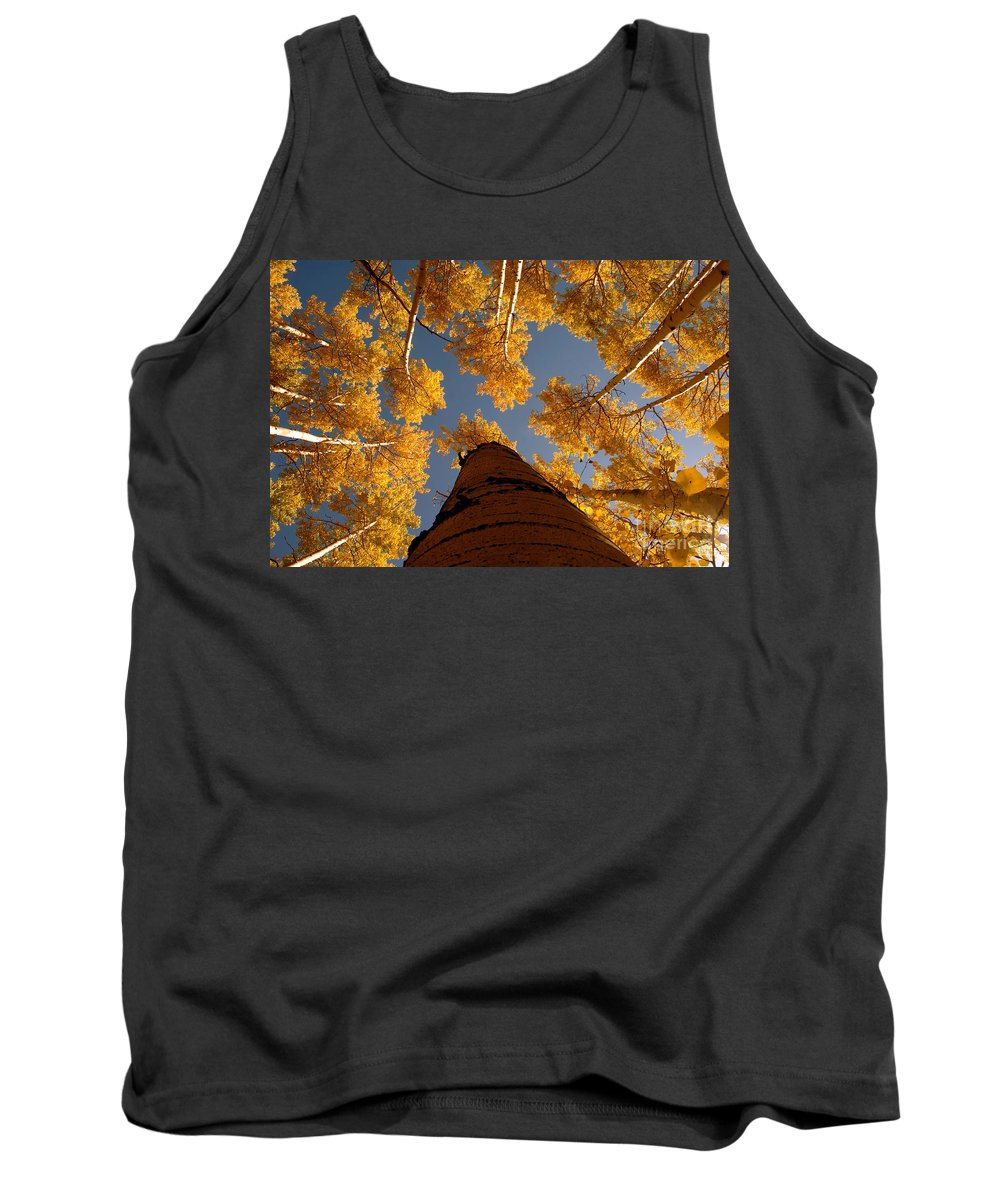 Fall Tank Top featuring the photograph Falling Sky by David Lee Thompson