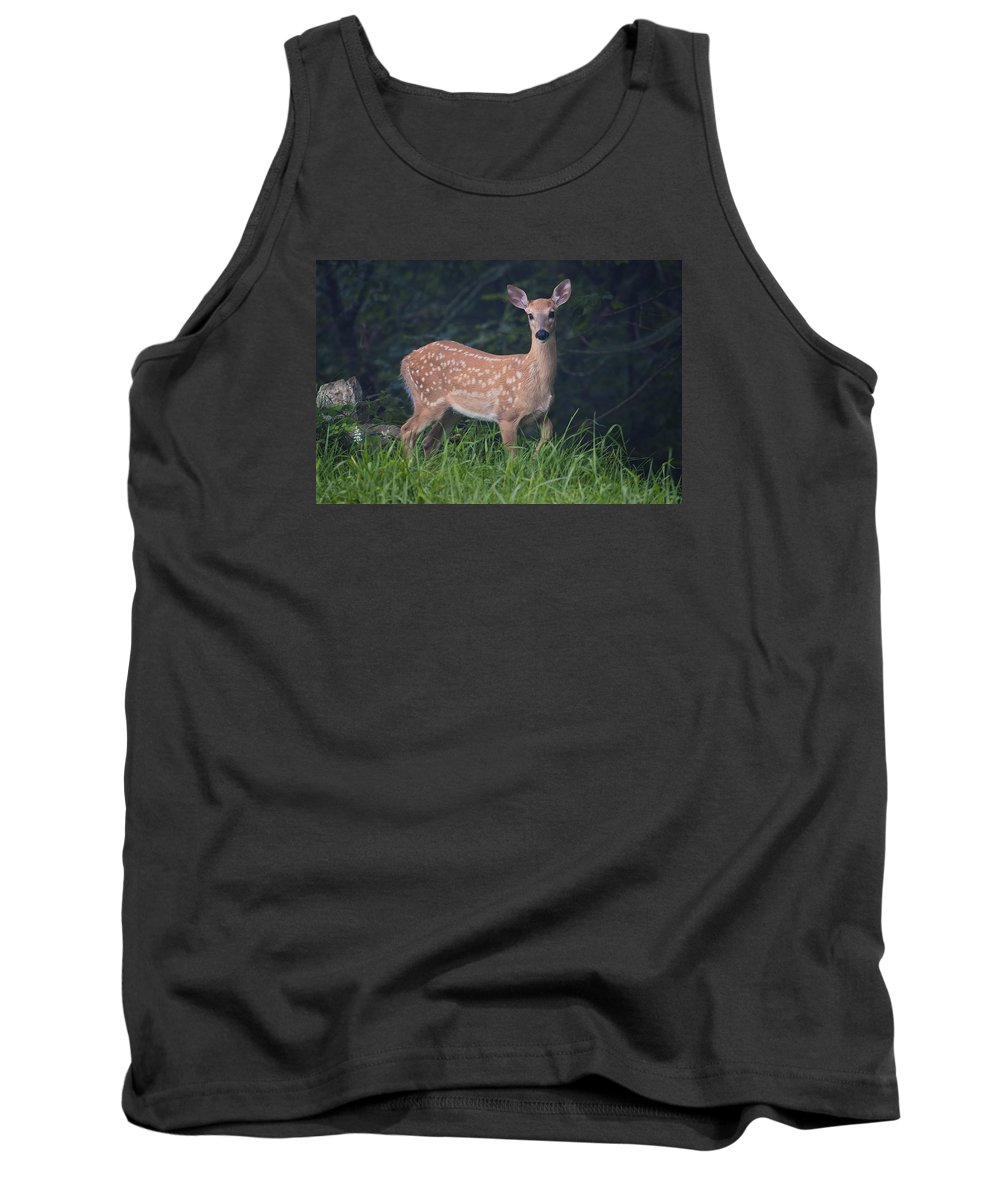 Fawn Tank Top featuring the photograph Fawn Doe by Ken Barrett