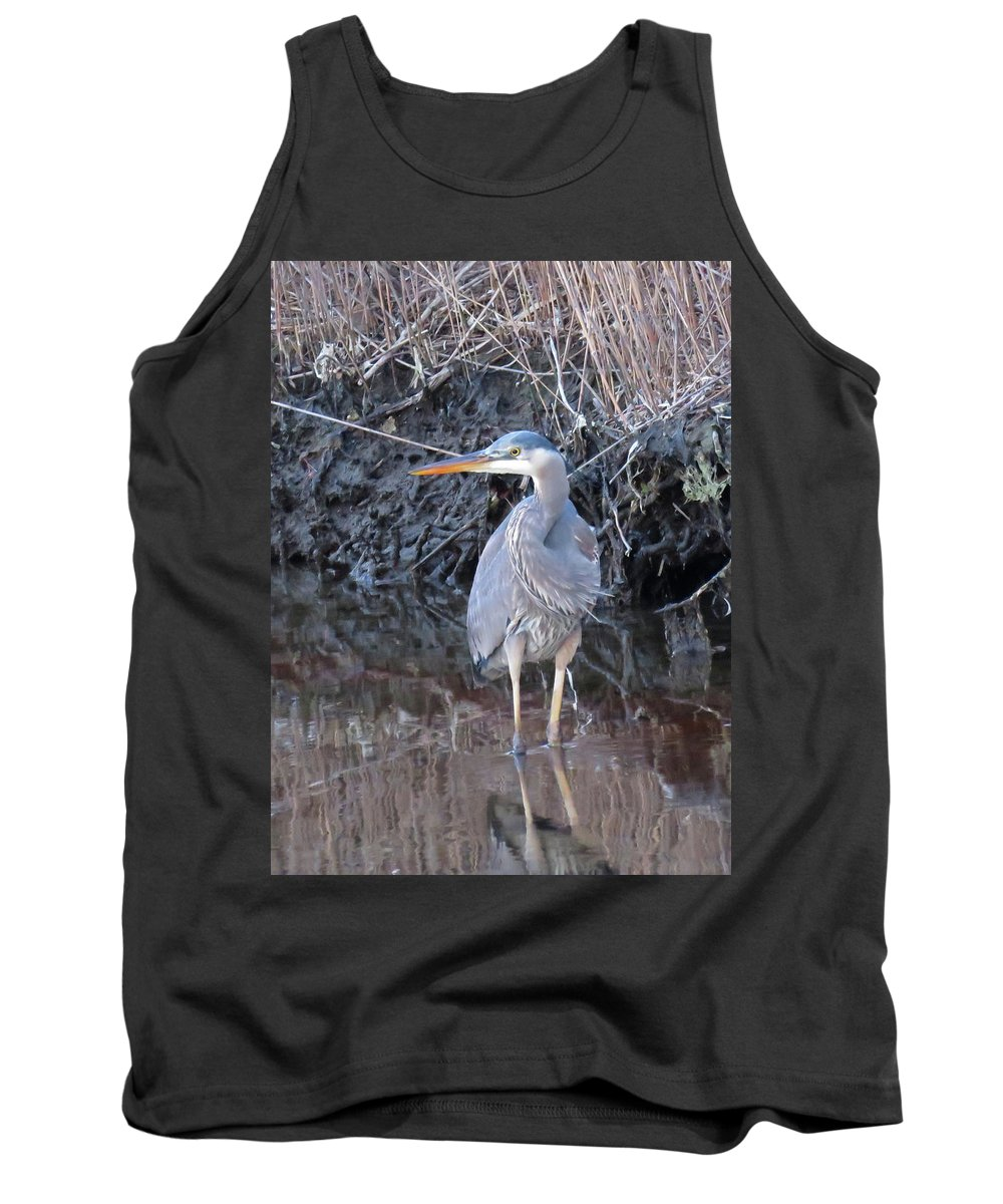 Great Blue Heron Tank Top featuring the photograph Feather Boa by Pat Miller