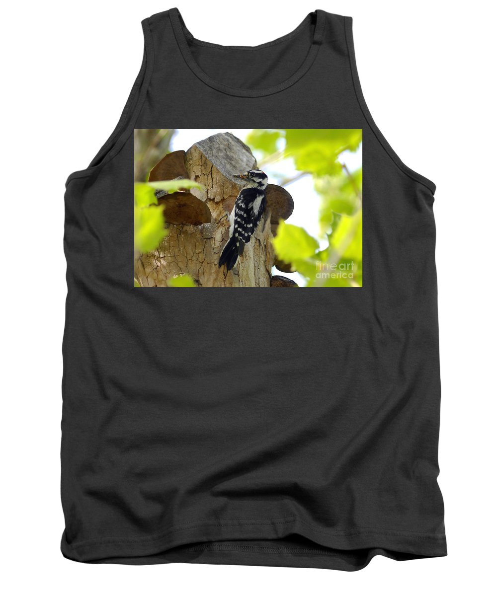 Downy Woodpecker Tank Top featuring the photograph Feeding Time by David Lee Thompson