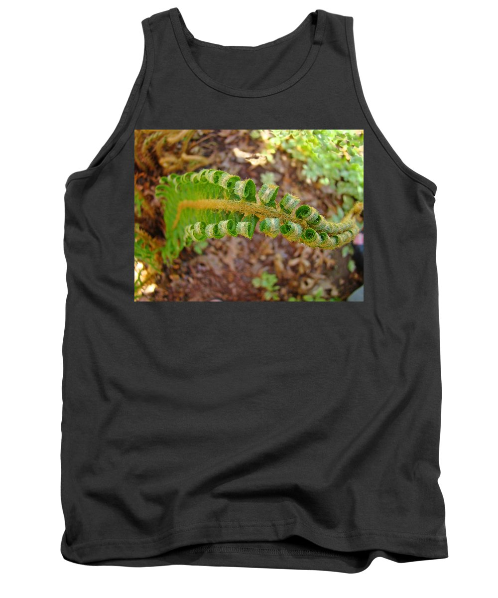 Fern Tank Top featuring the photograph Fern Branch Leaves Art Prints Forest Ferns Natures Baslee Troutman by Baslee Troutman