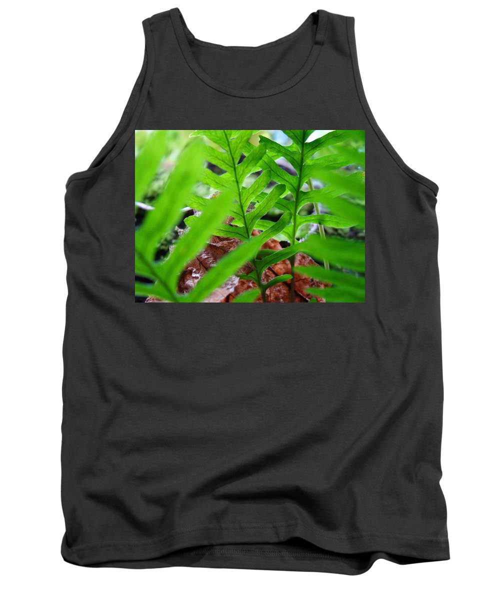 Fern Tank Top featuring the photograph Ferns Art Prints Forest Ferns Giclee Art Prints Basle Troutman by Baslee Troutman