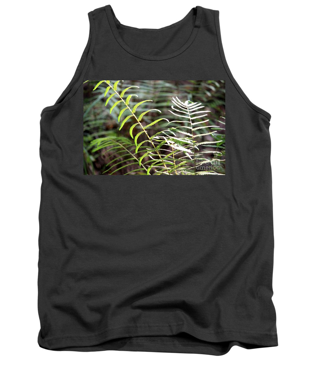Ferns Tank Top featuring the photograph Ferns In Natural Light by Carol Groenen