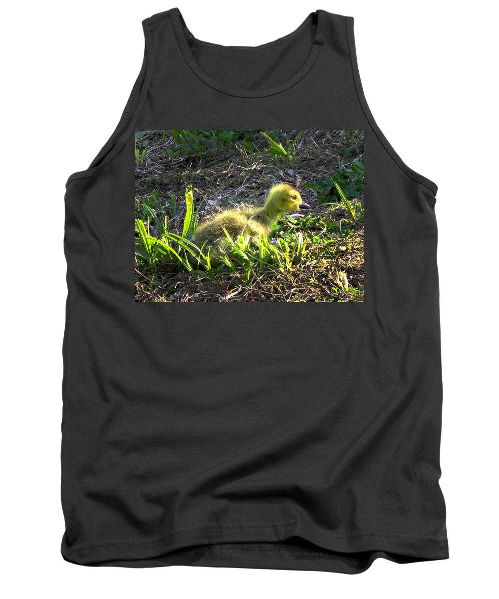 Gosling Tank Top featuring the photograph First Sunset by Craig Bohnert