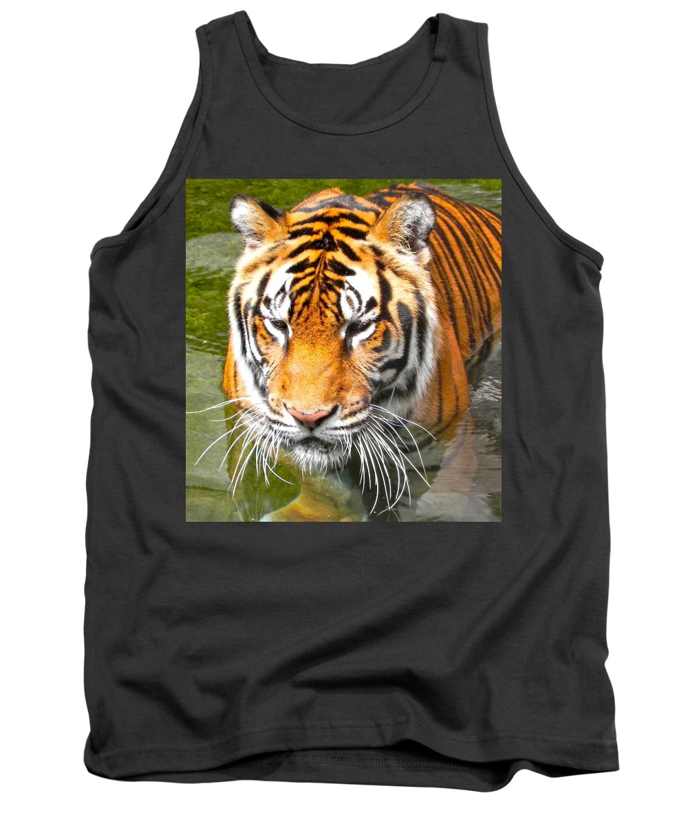 Tiger Tank Top featuring the photograph Floating Tiger by Maureen Beaudet