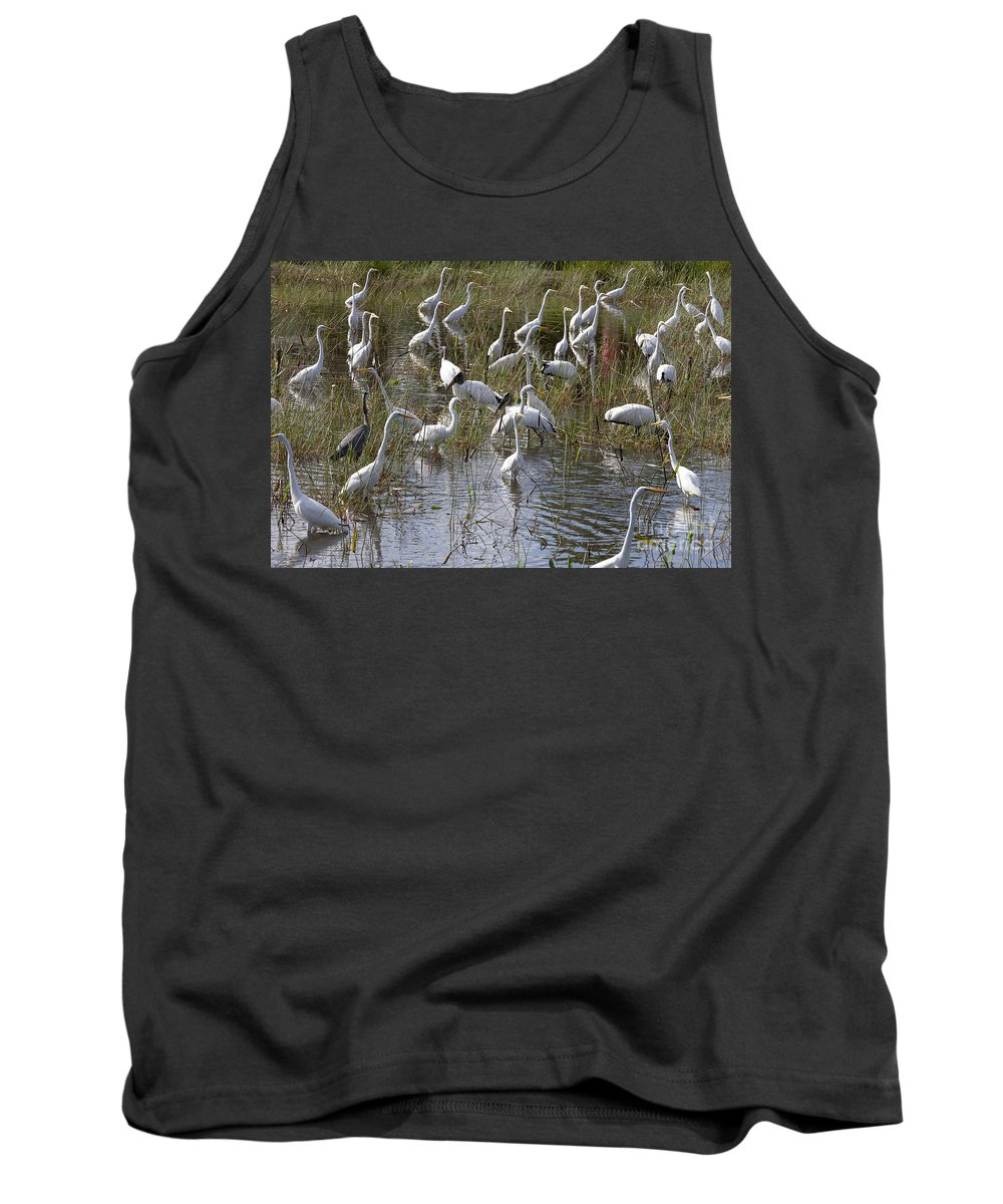 Everglades Tank Top featuring the photograph Flock Of Different Types Of Wading Birds by Anthony Totah