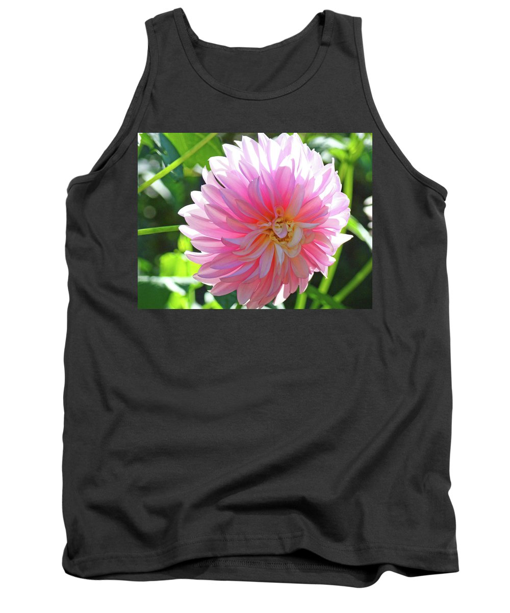 Dahlia Tank Top featuring the photograph Floral Art Prints Pink Dahlias Sunlit Baslee Troutman by Baslee Troutman