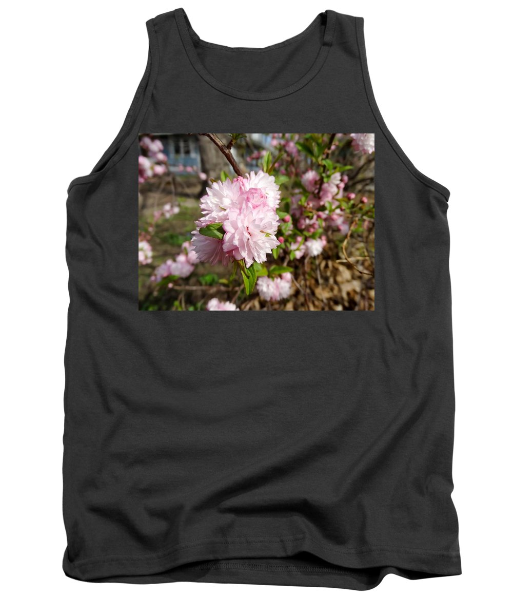 Flowering Almond Tank Top featuring the photograph Flowering Almond by Cynthia Woods