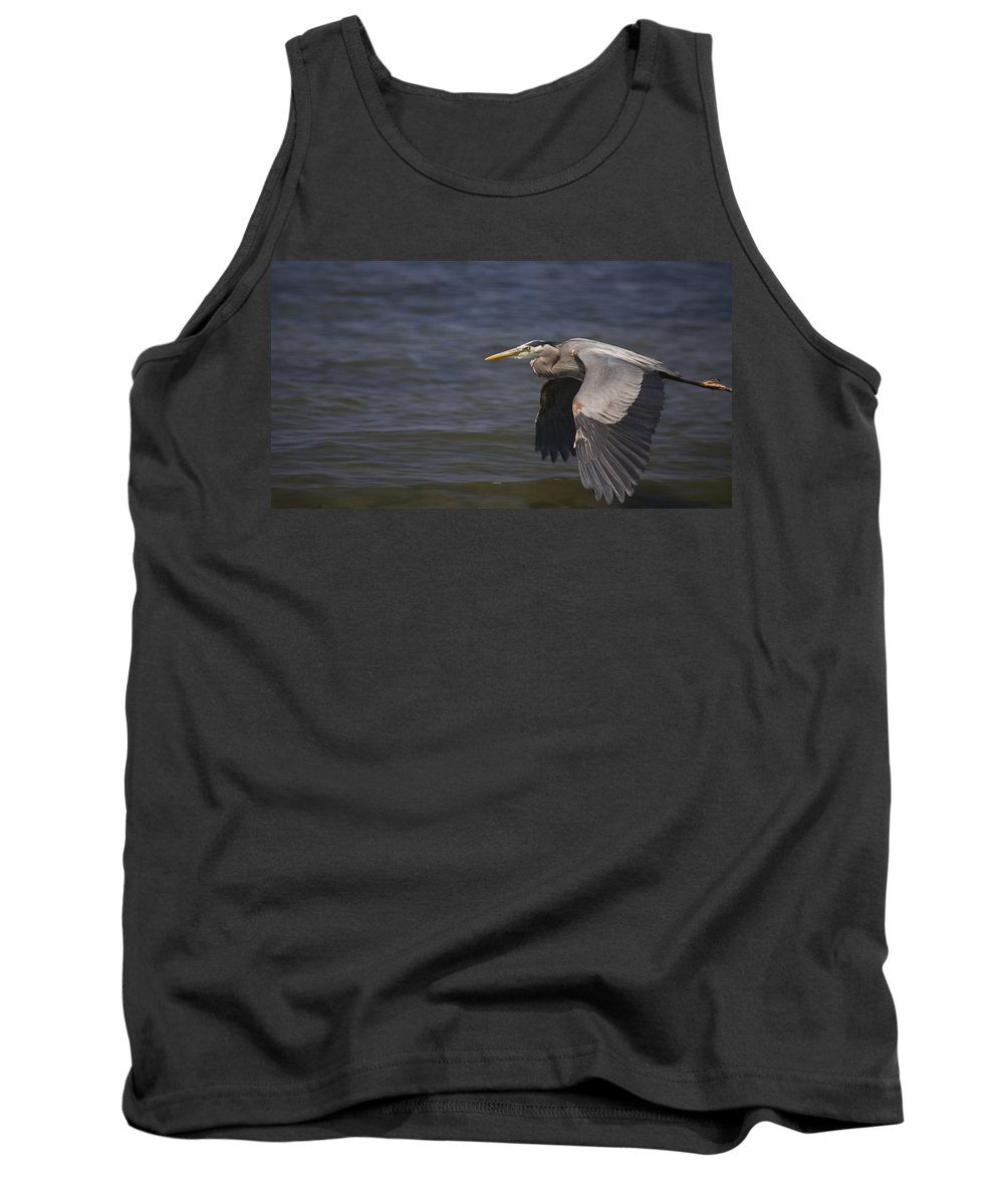Bird Tank Top featuring the photograph Fly By by Karen Ulvestad