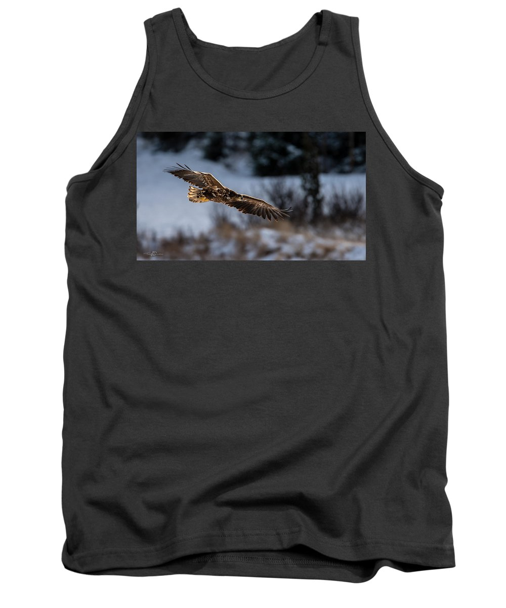 Flying White-tailed Eagle Tank Top featuring the photograph Flying White-tailed Eagle by Torbjorn Swenelius