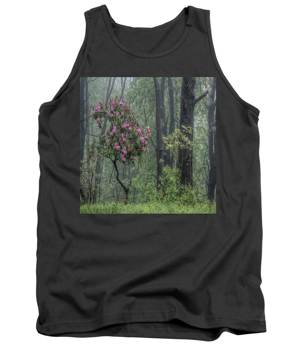 Rhodendron Tank Top featuring the photograph Forest Dancer by David Stone