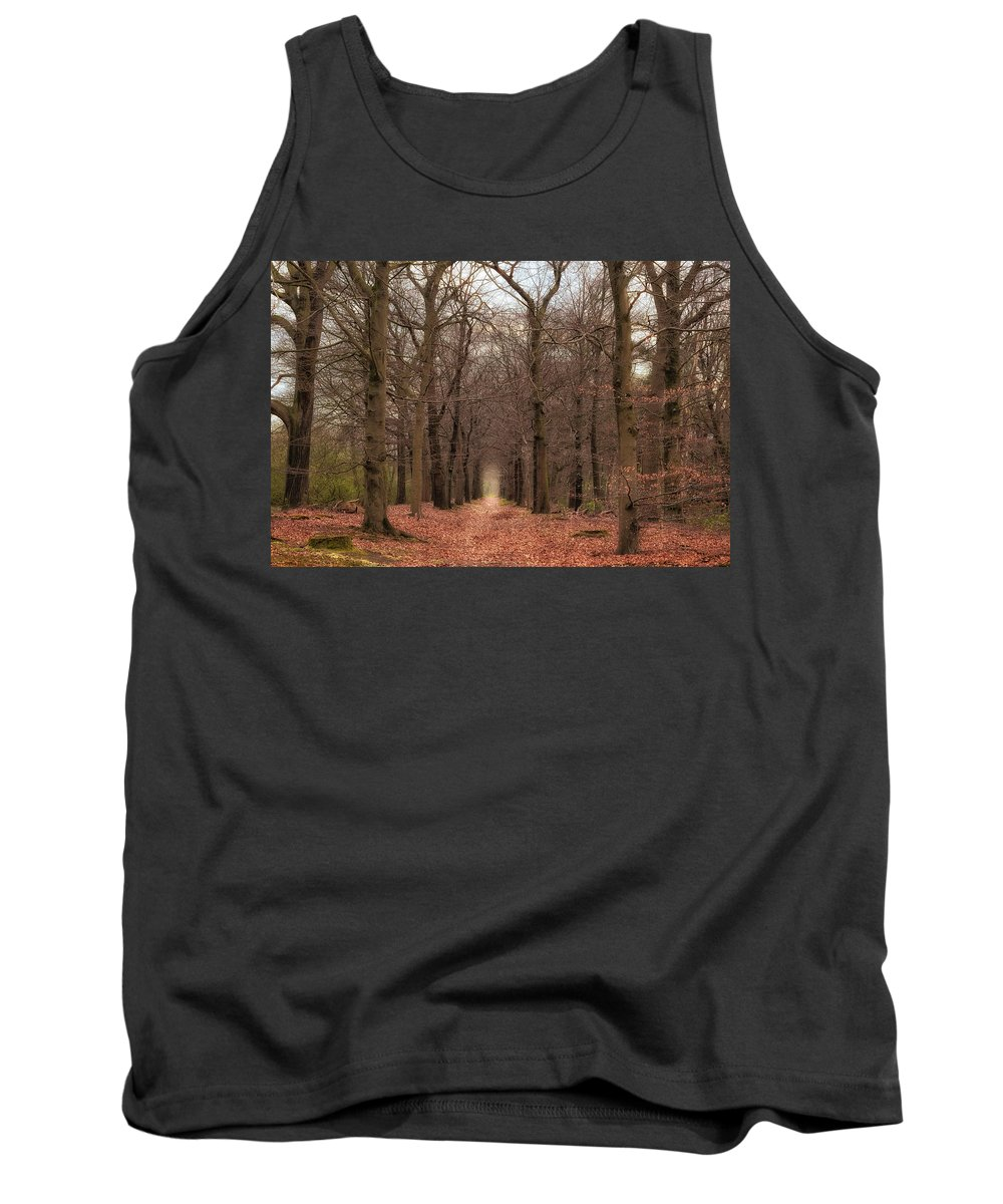 Netherlands Tank Top featuring the photograph Forest Lane Near Maarsbergen by Tim Abeln