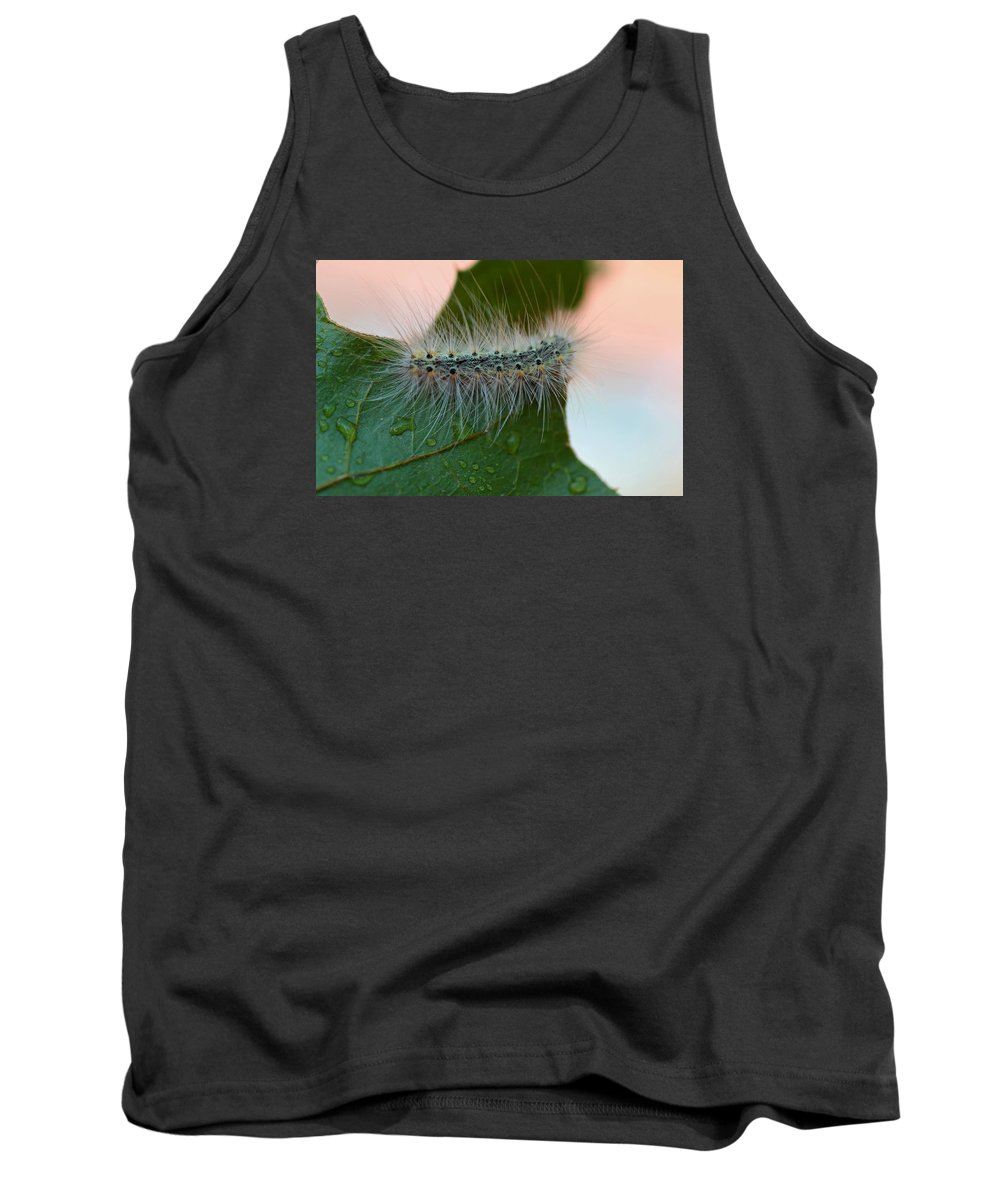 Caterpillar Tank Top featuring the photograph Fred II by Michiale Schneider